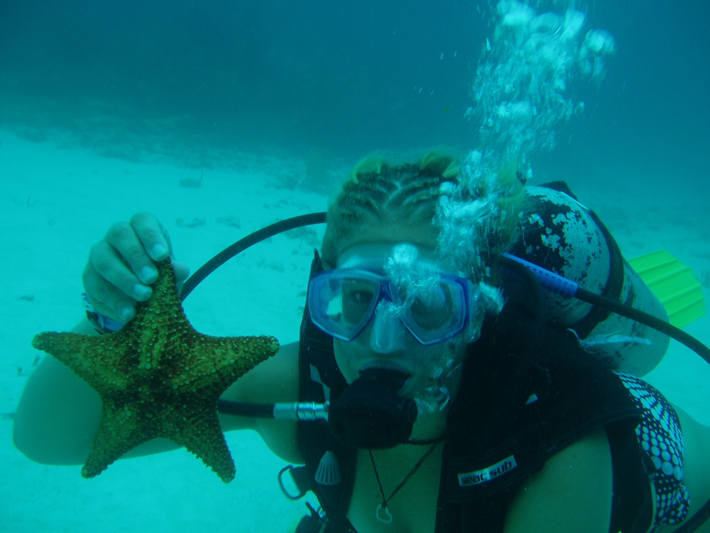 Scuba dive mexico with a starfish